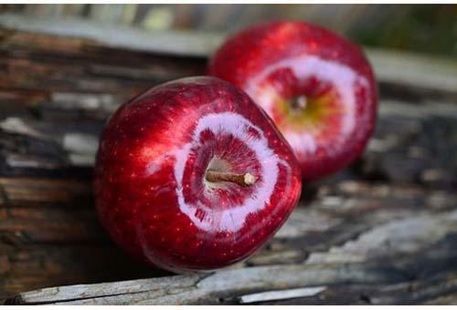 Apple-Mela