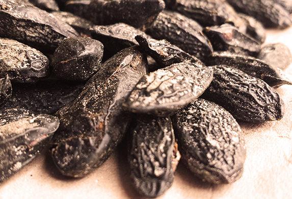 Brazilian Tonka Bean